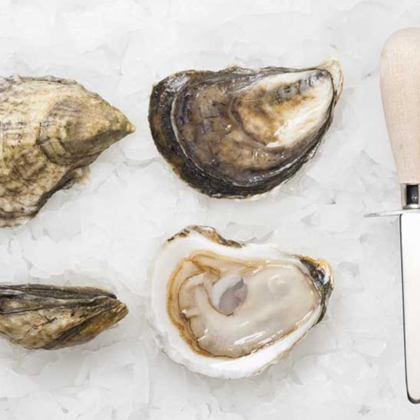 Pemaquid Oyster Co.