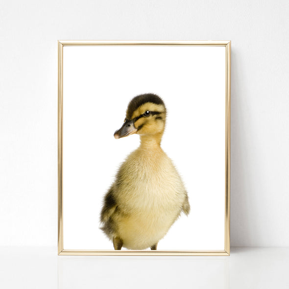 duckling nursery art