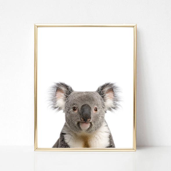 koala nursery decor