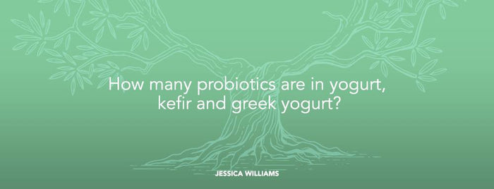 How many probiotics are in yogurt, kefir and greek yogurt?