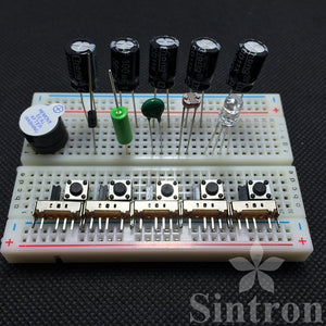 [Sintron] 40-Pin GPIO Extension Board Starter Kit + Micro Servo SG90 Sidekick LED Thermistor Temperature Sensor Breadboard for Raspberry Pi 1 Models A+ & B+, Pi 2 & 3 Model B and Pi Zero - Sintron