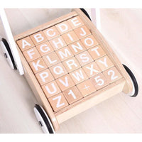 Wooden Baby Walker with Block Set-