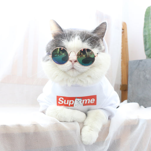 Supreme Sweater Pets Edition