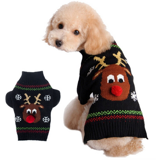 Dog Reindeer Sweater Outfit
