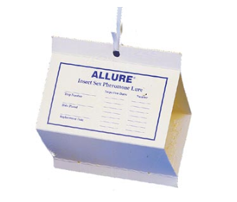 Allure Moth Kit 24/cs