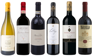 Premium Antinori Collection