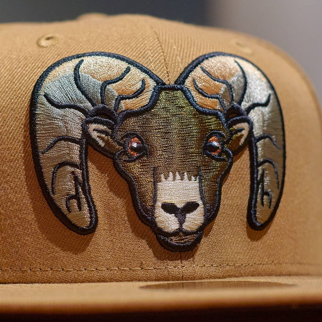 BigHorns Fitted Hat
