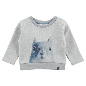 Sudadera Gray Squirrel