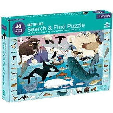 Arctic Life: Search and Find Puzzle
