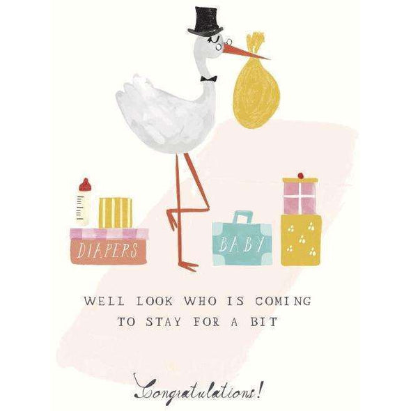 Storks Suitcases Greeting Card