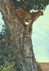 60084_C1_- titled 'On the Lookout' by artist Kalon Baughan - Wall Art Print on Textured Fine Art Canvas or Paper - Digital Giclee reproduction of art painting. Red Sky Art is India's Online Art Gallery for Home Decor - B1738
