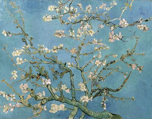 60241_C1_- titled 'Almond Blossom, 1890' by artist Vincent van Gogh - Wall Art Print on Textured Fine Art Canvas or Paper - Digital Giclee reproduction of art painting. Red Sky Art is India's Online Art Gallery for Home Decor - V401