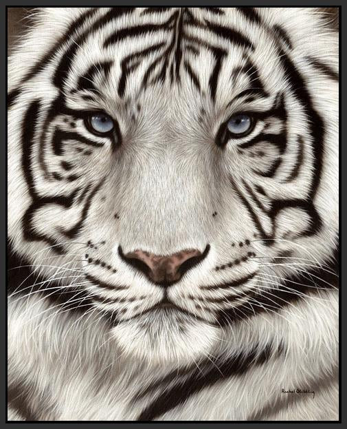 60202_FB1_- titled 'White Tiger Face Portrait' by artist Rachel Stribbling - Wall Art Print on Textured Fine Art Canvas or Paper - Digital Giclee reproduction of art painting. Red Sky Art is India's Online Art Gallery for Home Decor - S2625