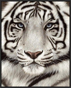 60202_FB2_- titled 'White Tiger Face Portrait' by artist Rachel Stribbling - Wall Art Print on Textured Fine Art Canvas or Paper - Digital Giclee reproduction of art painting. Red Sky Art is India's Online Art Gallery for Home Decor - S2625