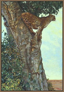 60084_FN2_- titled 'On the Lookout' by artist Kalon Baughan - Wall Art Print on Textured Fine Art Canvas or Paper - Digital Giclee reproduction of art painting. Red Sky Art is India's Online Art Gallery for Home Decor - B1738