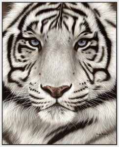 60202_FW1_- titled 'White Tiger Face Portrait' by artist Rachel Stribbling - Wall Art Print on Textured Fine Art Canvas or Paper - Digital Giclee reproduction of art painting. Red Sky Art is India's Online Art Gallery for Home Decor - S2625