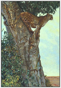 60084_FW2_- titled 'On the Lookout' by artist Kalon Baughan - Wall Art Print on Textured Fine Art Canvas or Paper - Digital Giclee reproduction of art painting. Red Sky Art is India's Online Art Gallery for Home Decor - B1738