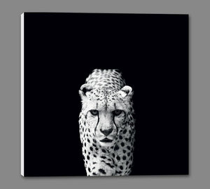 45002_GS1_ - titled 'Acinonyx Jubatus' by artist Nicolas Evariste - Wall Art Print on Textured Fine Art Canvas or Paper - Digital Giclee reproduction of art painting. Red Sky Art is India's Online Art Gallery for Home Decor - 55_WDC98070