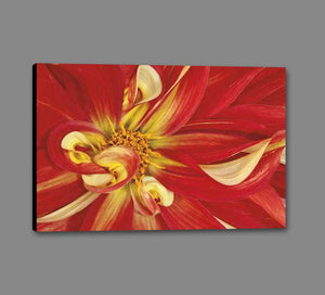 35172_GS1_- titled 'Red Dahlia' by artist Donald Paulson - Wall Art Print on Textured Fine Art Canvas or Paper - Digital Giclee reproduction of art painting. Red Sky Art is India's Online Art Gallery for Home Decor - 763_TR19427