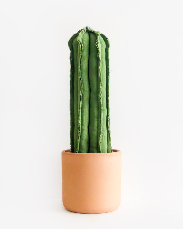 Large Straight Column Cactus - Green (Sample)