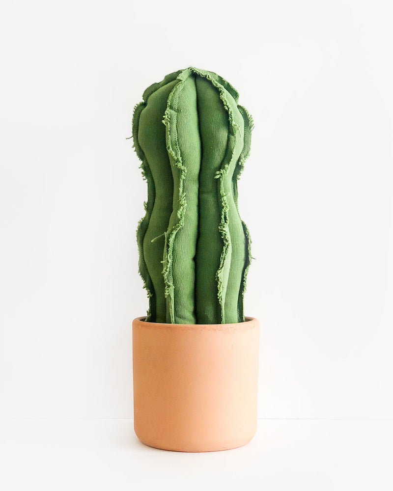 Large Wavy Column Cactus - Green (Sample)