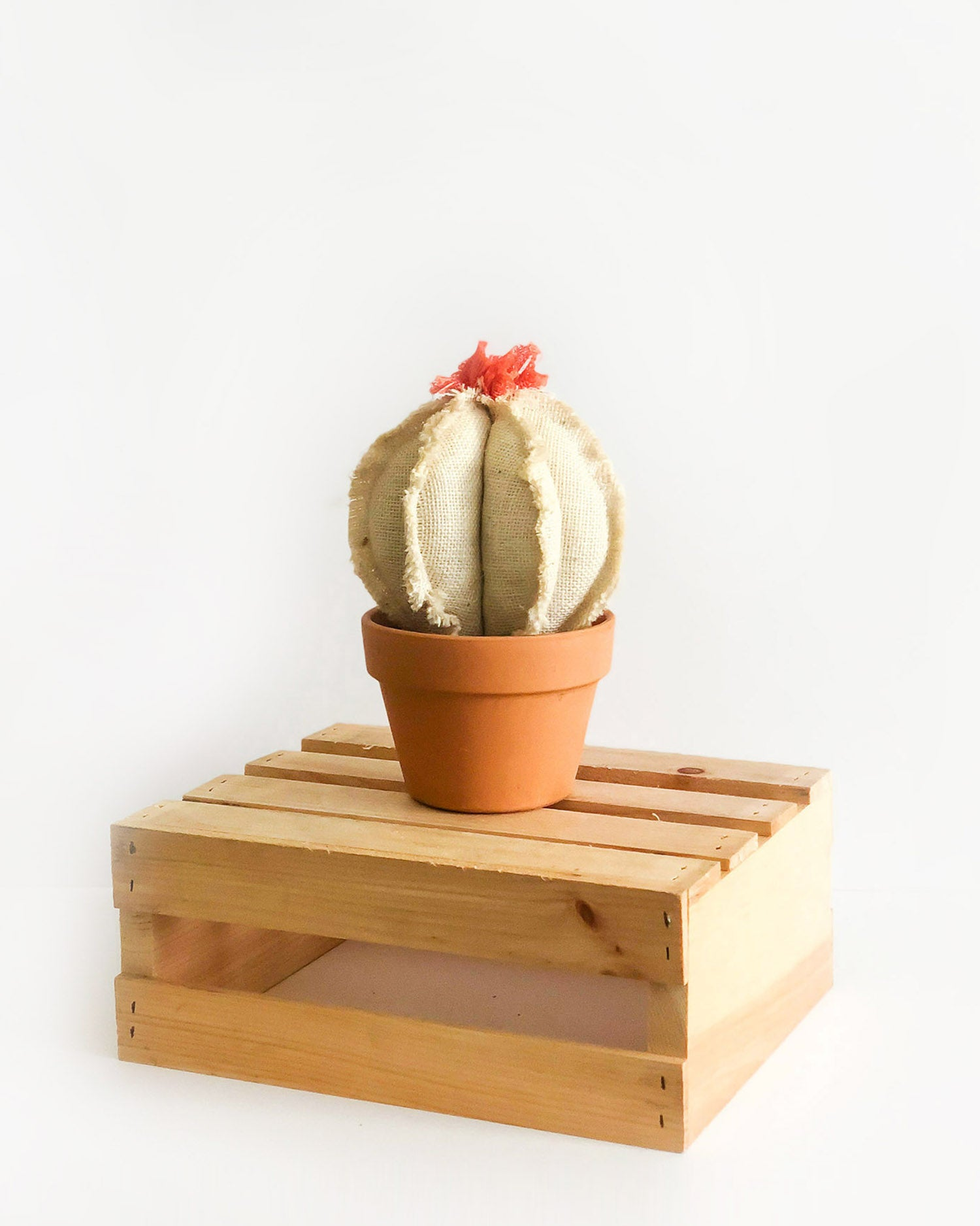 Medium Barrel Cactus - White Burlap