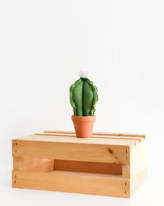 Mini Column Cactus - Green