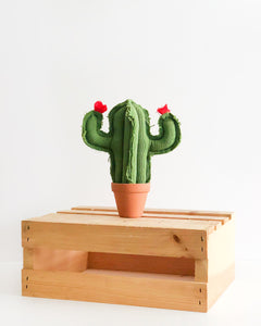 Mini Saguaro Cactus - Green