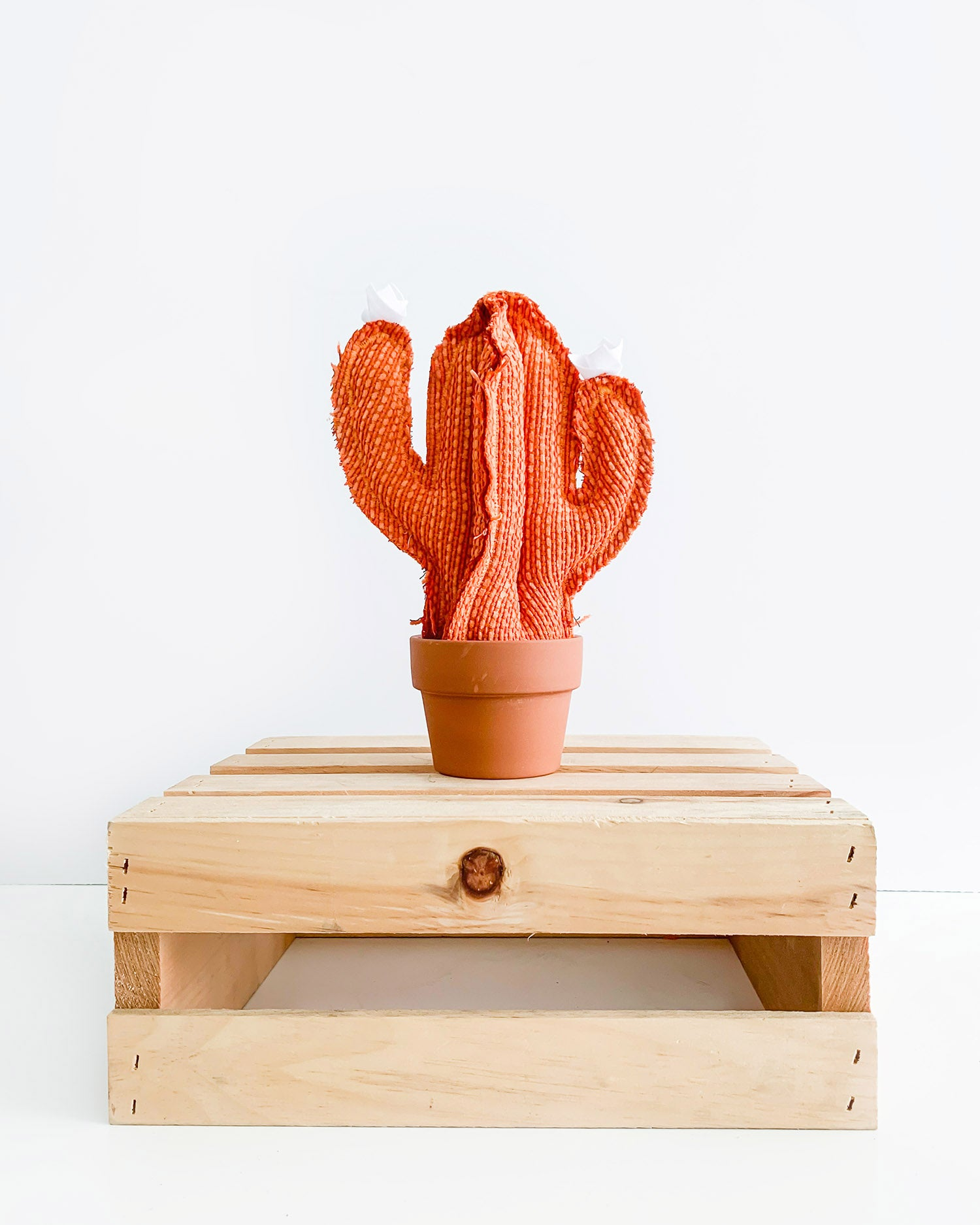 Small Saguaro Cactus - Orange