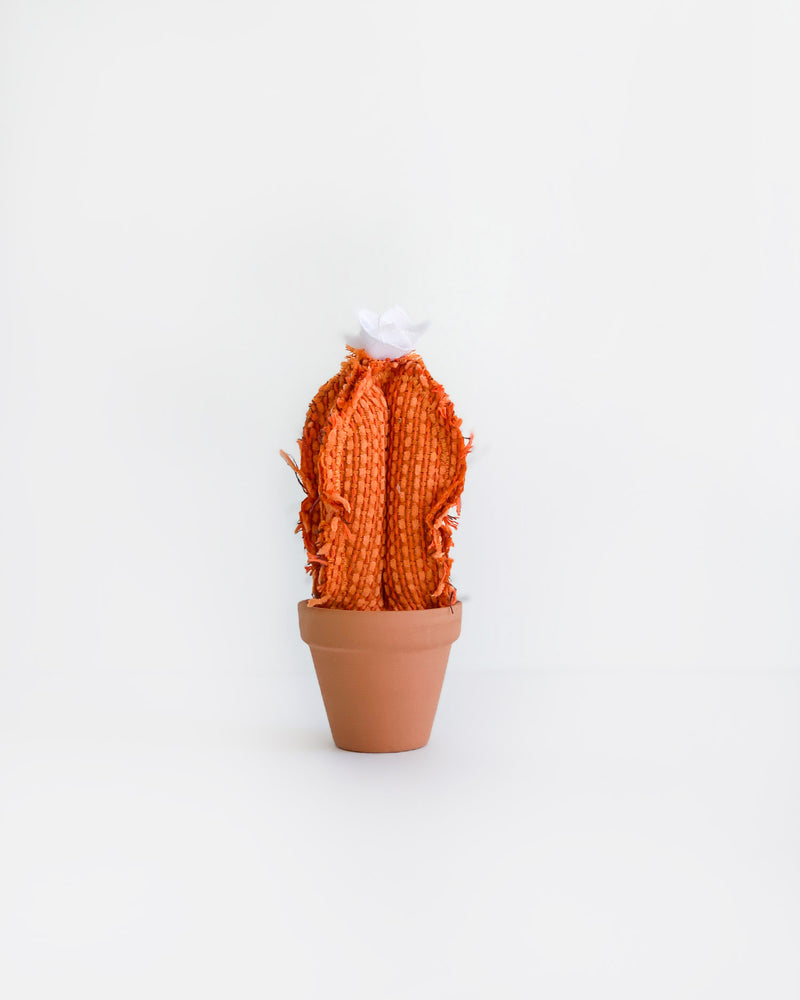 Mini Column Cactus - Orange
