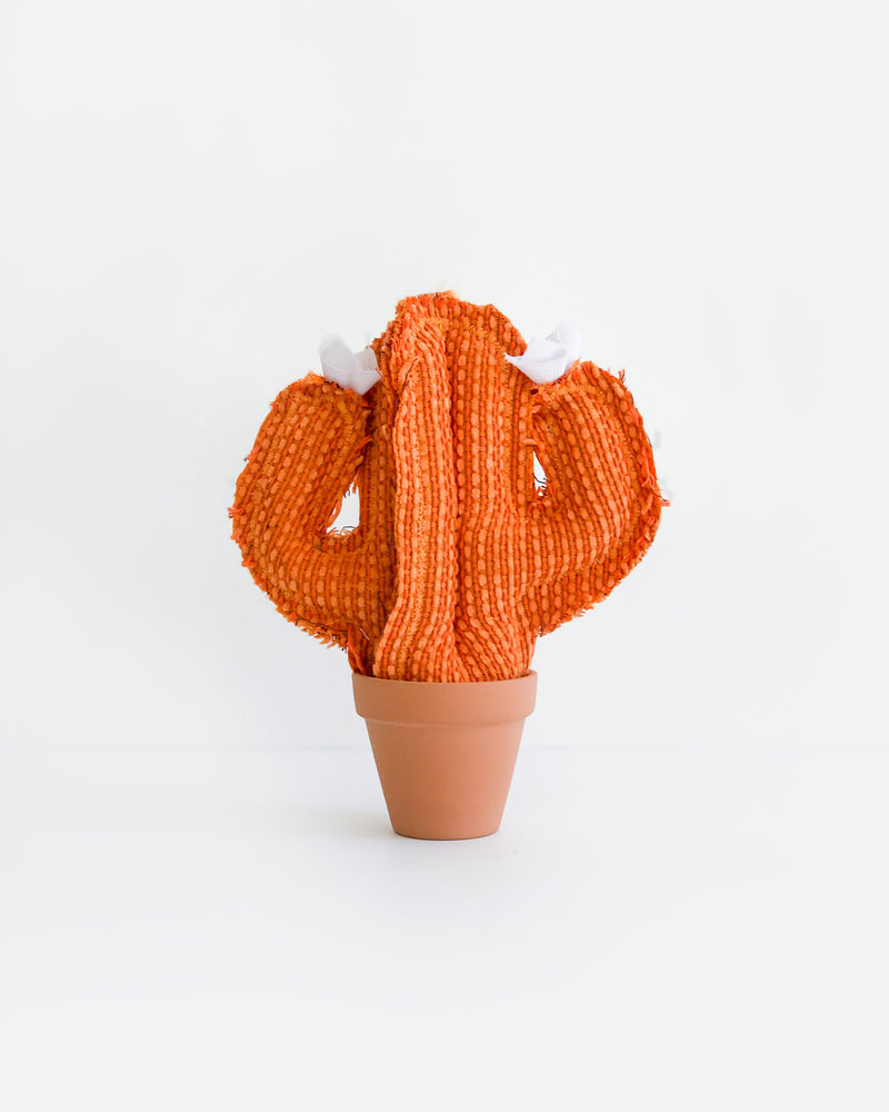 Mini Saguaro Cactus - Orange