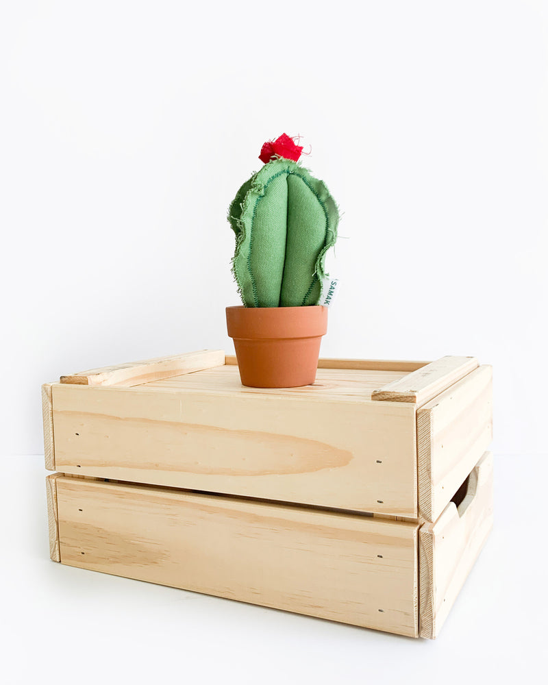 Small Column Cactus - Green Canvas (Sample)