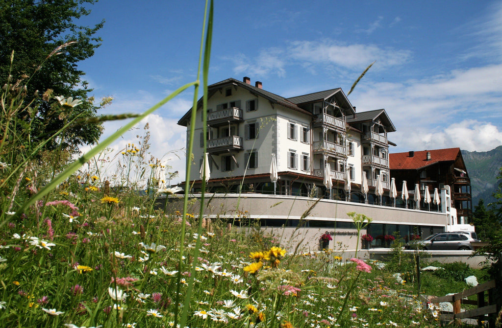 ROMANTIK HOTEL 4*THE ALPINA MOUNTAIN RESORT & SPA-Tschiertschen