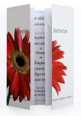 Red Gerbera Wedding Invitations
