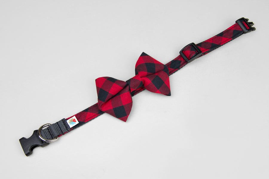 COLLAR AND BOW TIE | CHECKERED BLACK AND RED