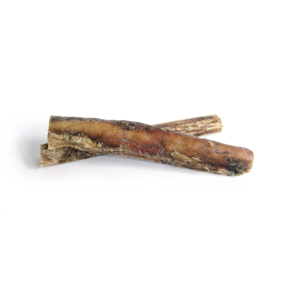 NATURAL CHEW | Pizzle Stick 18-20 cm