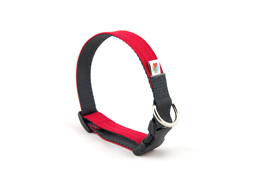 COLLAR | Funston in Red