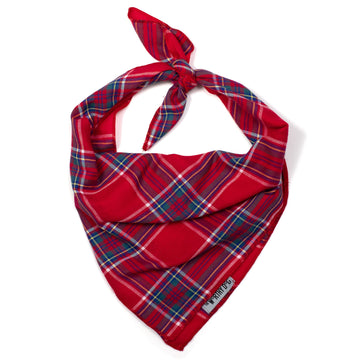 BANDANA | Blue | Red Plaid