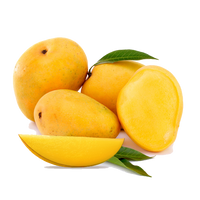 Mango (12 pieces)