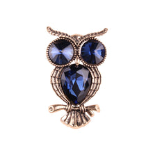 Color Owl Brooch