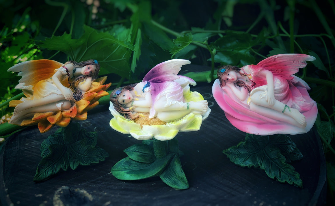 Fairies sleeping on flowers