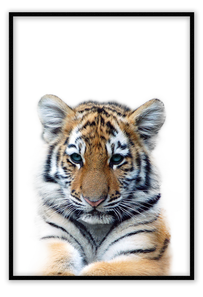 Tigre - Framed Art Print - Kids nursery