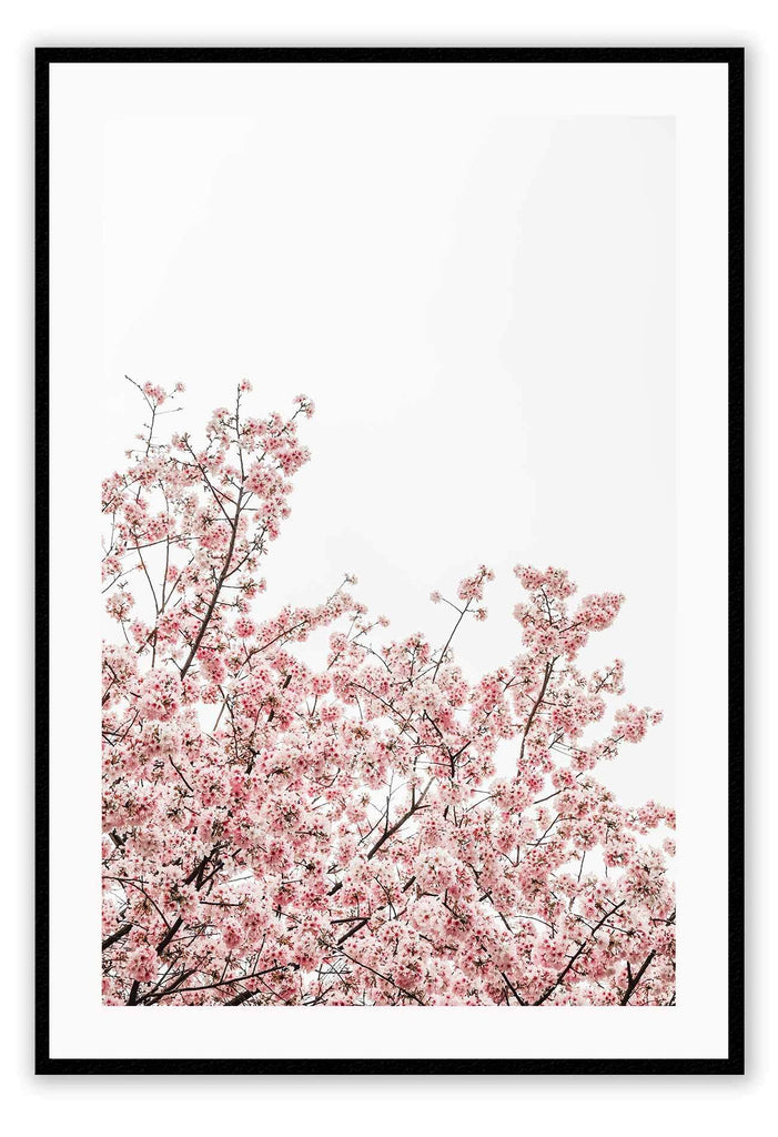 Central Park Park New York Pink Tree Flowers Print Wall Print Framed Art Poster Image Online Photo Painting Living Lounge
