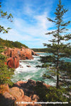 NAU0008- Acadia National Park, Maine