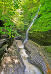 FRM0043 - Watkins Glen State Park, New York