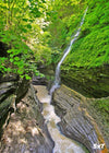 WAT0001-Watkins Glen State Park, New York