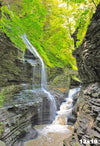 WAT0025-Watkins Glen, New York