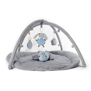 O.B. Designs Woodland Activity Playgym Set Blue