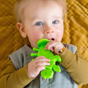 Dibly Dino Teether Lime