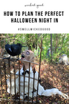 How To Plan the Perfect Halloween Night In